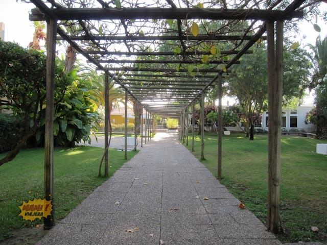 El bonito camino al restaurante del hotel